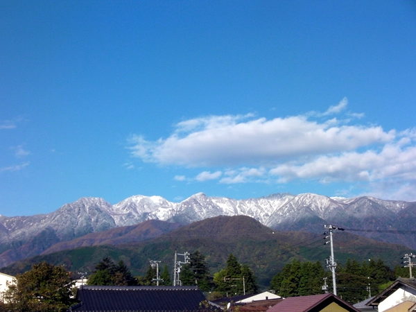 20101102yukigeshiki1.JPG